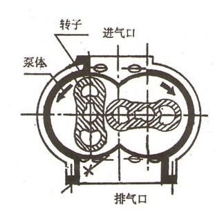 ZJ系列罗茨真空泵的结构